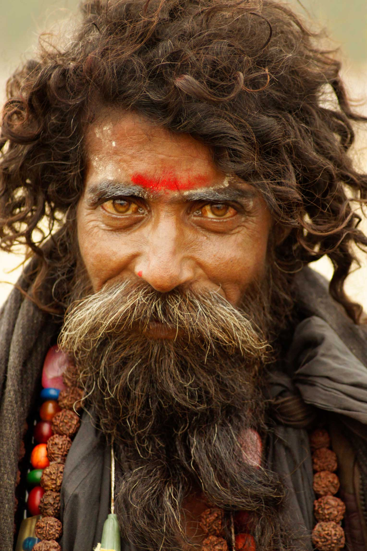 Indien-Febr.2013-(Phyllis-Bilder)-1308